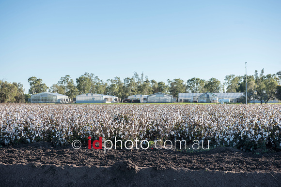 Australian Cotton Research Centre, Wee Waa, NSW