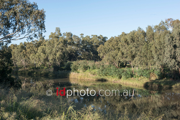 Narrabri Creek, NSW